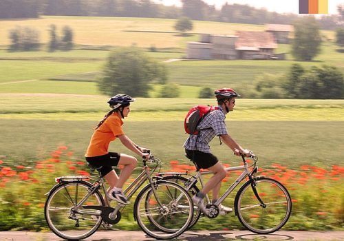 Cyclists ride along the fields