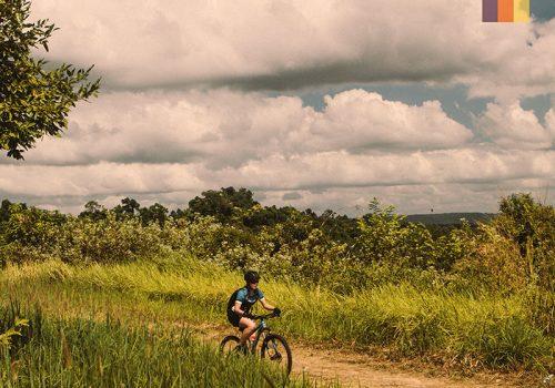Cyclist rides through the fields