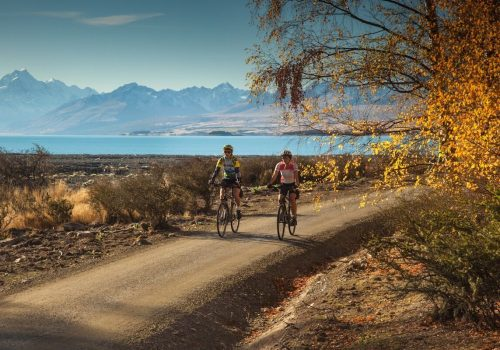 Cyclists ride in new Zealand