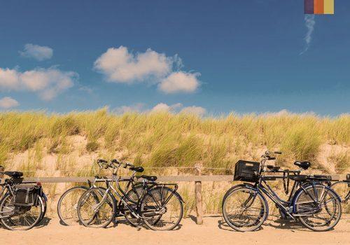 Bikes against the dunes