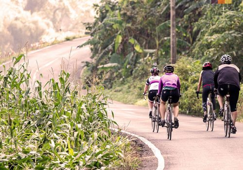 Cyclists in Thailand