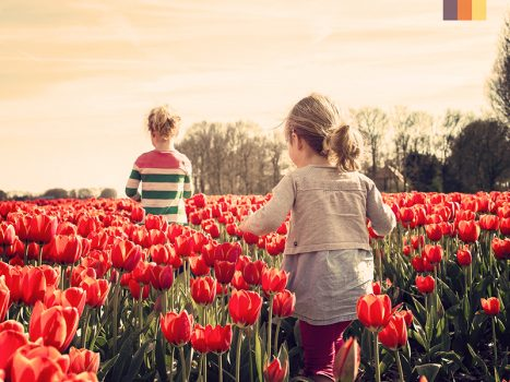 Kids in a tulip field