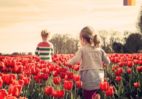 Kids in a tulip field