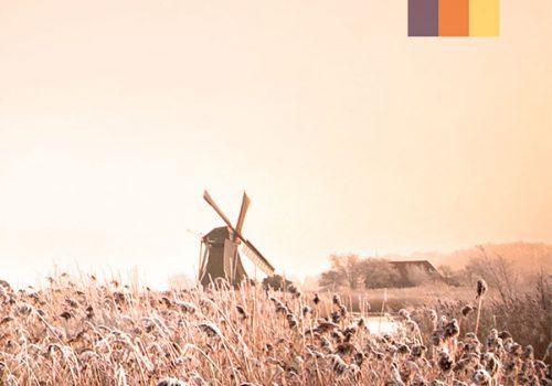 Windmill in the fields