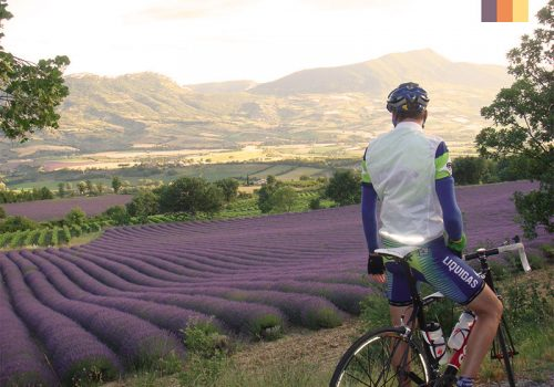 Cyclist looks to the landscape of Luberon