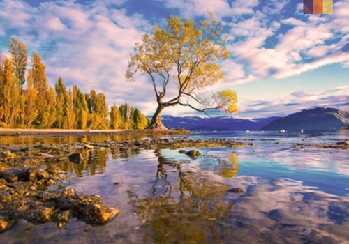 View of the Lake Wakatipu in New Zealand