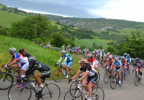 Cyclists riding the Nove Colli race