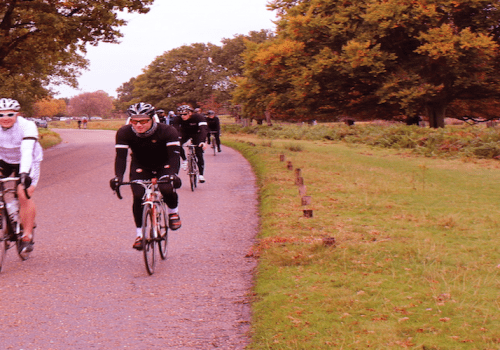 Cyclists ride on the road