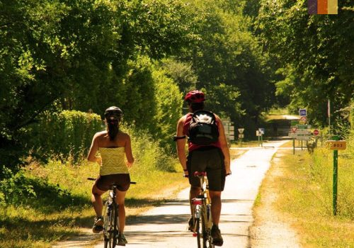 2 Cyclists ride in the nature