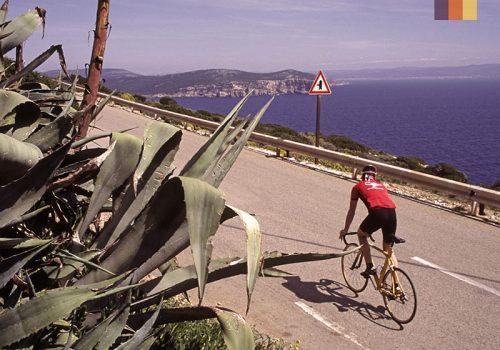 Cyclist ride along the Sicilian coast
