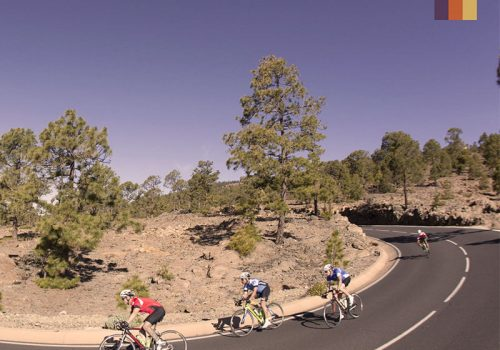 Cyclists ride in Tenerife