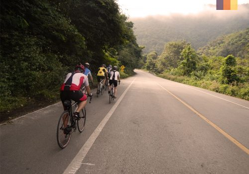 Cyclists ride on the roads of Phuket
