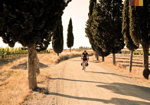 Cyclist rides in Tuscany