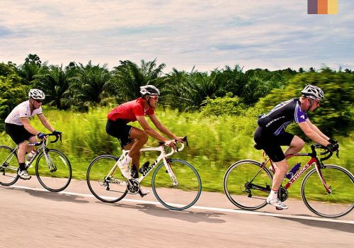 Cyclists ride along the trees in Vietnam