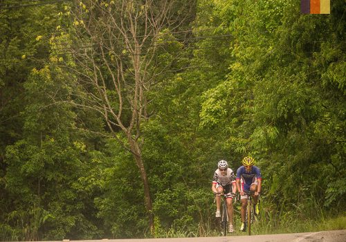Cyclists riding through the nature of Vietnam