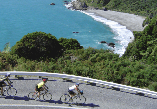 road cyclists cycle on New Zealand's West coast on a smooth tarmac road next to the blue ocean