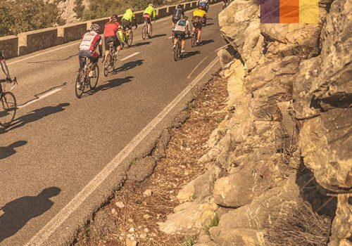 Cyclists ride the Mallorca 312