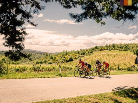 4 Cyclists ride along the vineyards