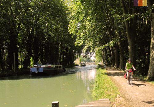 Cyclist rides next to the Canal de Garonne