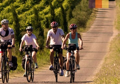 Cyclists ride along the vineyards in Luberon