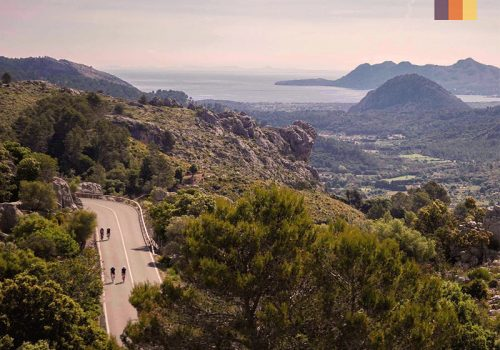 Cyclists ride through the beautiful Mallorca