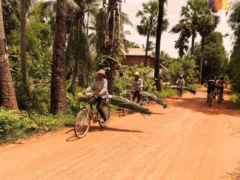 cambodian locals carry leaves on their bikes on off road track