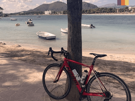a road cycling bike against a tree with the bay of alcudia behind it