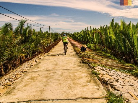 cyclist between banana trees on a dirt track in vietnam