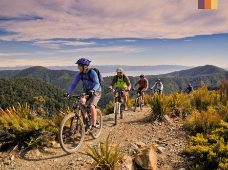 a group of cyclists on mountain bikes cycling off road in the new zealand countryside