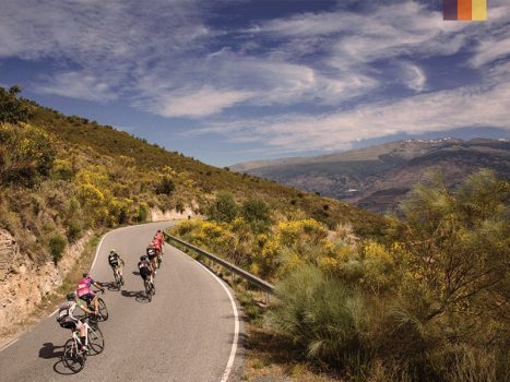 a group of cyclists on the road of the goat climb in the sierra nevada, spain