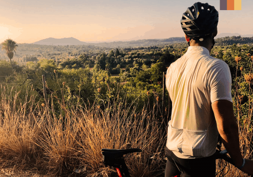 a road cyclist in the flatlands of mallorca, surrounded by vineyards and olive groves