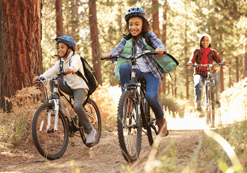 a group of children cycling in a woodland