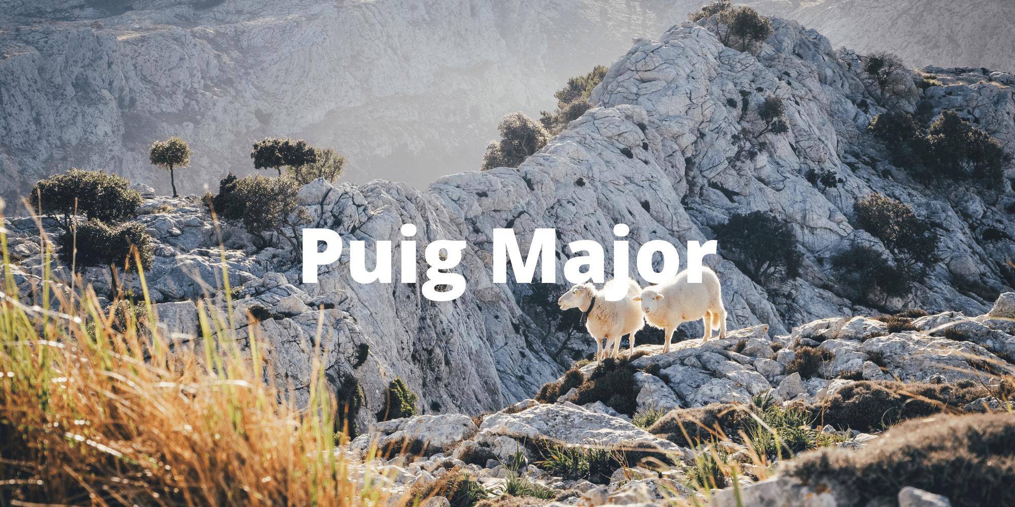 Puig Major Climb in Mallorca
