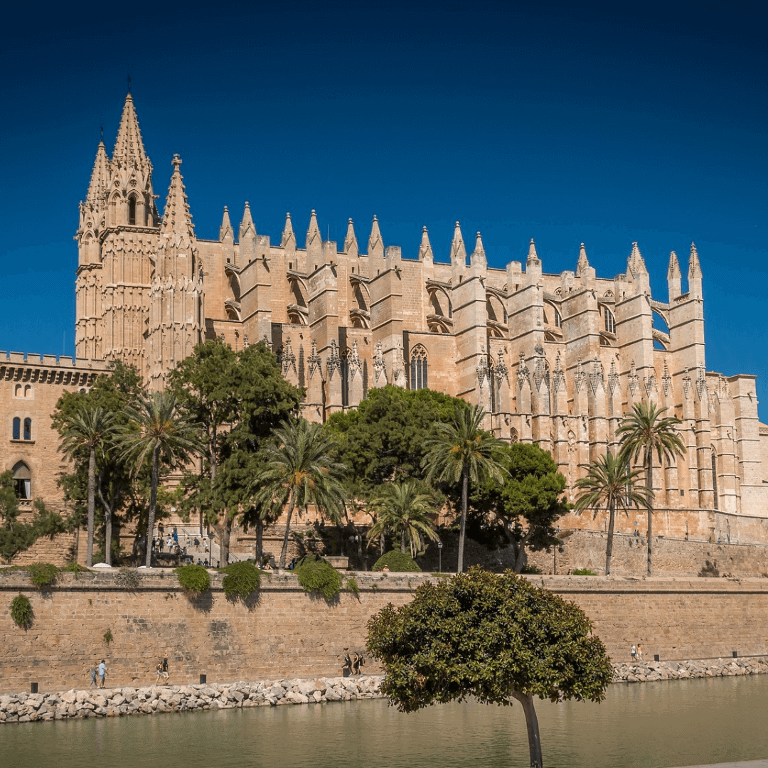 The cathedral in Palma Mallorca